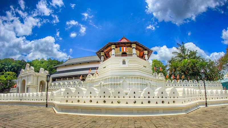 Top tourism companies in Sri Lanka