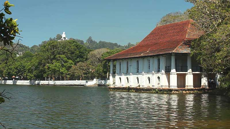 Top tourism companies in Sri Lanka