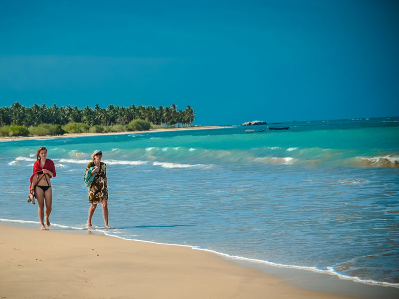 Best Travel Agents in Sri Lanka